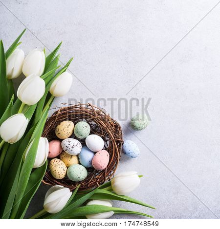 Beautiful white tulips with colorful quail eegs in nest on light gray stone background. Spring and Easter holiday concept with copy space.