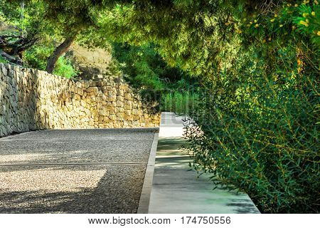 Paved pathway in a park green trees with dangling branches shadow and sunlight stone wall tranquil atmosphere summertime
