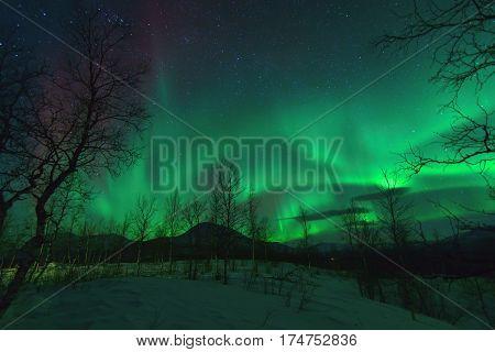 Aurora Borealis in Lapland northen lights phenomenon.
