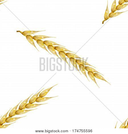 Seamless background from a set of photo realistic spikelets of wheat vector illustration.