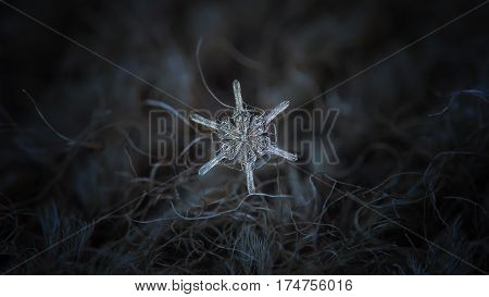Macro photo of real snowflake: small snow crystal with unusual shape, resembling ship's wheel - with six straight arms without any branches and ring of transparent icy