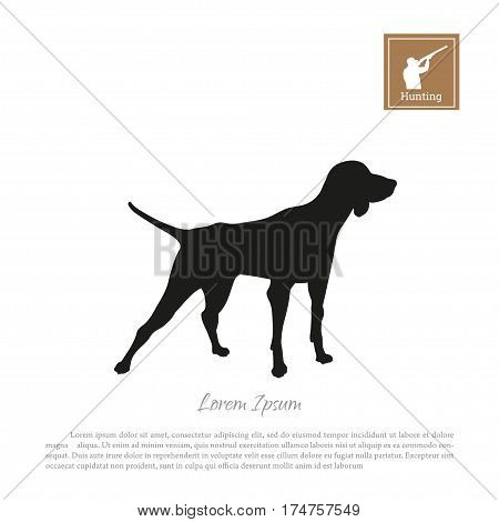 Black silhouette of a hunting dog on a white background. Vector illustration