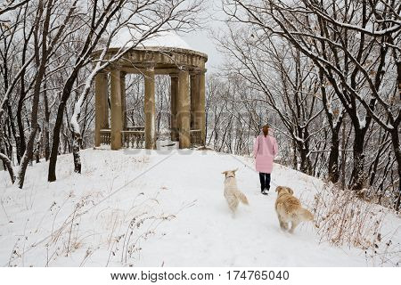 Young woman with dogs walking in the park after a heavy snowfall