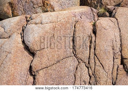 Close Up Of Cracked Rock Fragment