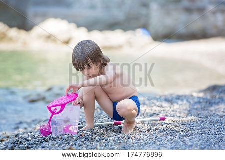 Cute Boy With Fishing Net And Bucket, Trying To Catch Some Little Fishes In The Sea