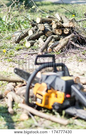 Chainsaw Over Fresh Cutted Firewood