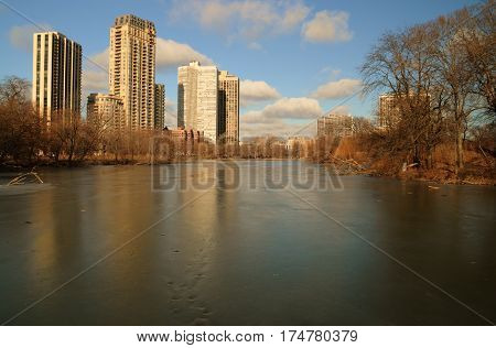 beautiful winter morning pond in Lincol Park Pond in Chicago