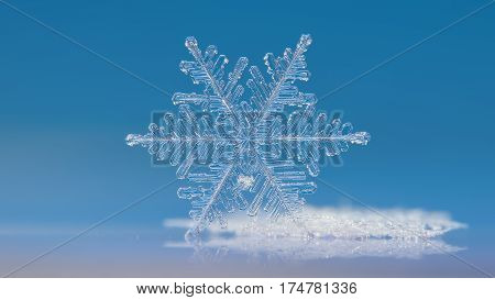 Macro photo of real snowflake: very large and complex snow crystal of fernlike dendrite type, standing on edge against clean blue background, with mirror reflection in glass behind the crystal. This is horizontal version with cinematic proportions and man