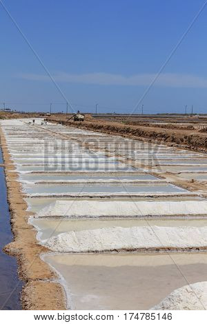 Sea Salt in Tavira in the Algarve