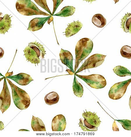 Autumn seamless pattern with leaves and seeds of chestnut. Watercolor illustration