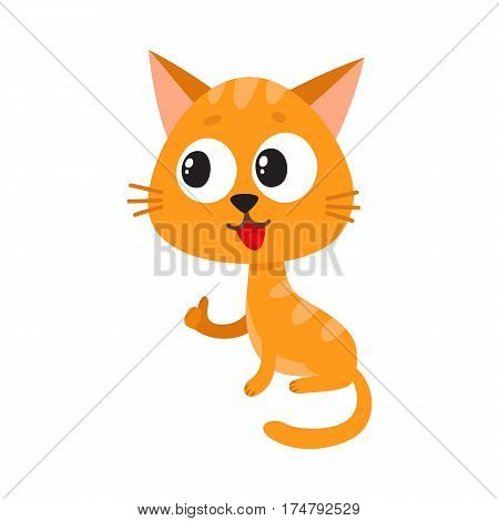 Cute and funny red cat character sitting and showing thumb up, cartoon vector illustration isolated on white background. Cute and funny red cat character with big eyes giving thumb up