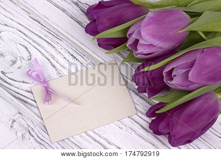 Purple Tulips With White Paper On A White Wooden Background With Card For Text. Womans Day. 8 March.