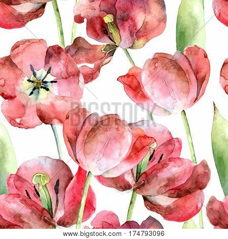 Bright floral seamless pattern with blossoming red tulips. Watercolor illustration