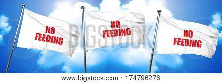 no feeding, 3D rendering, triple flags