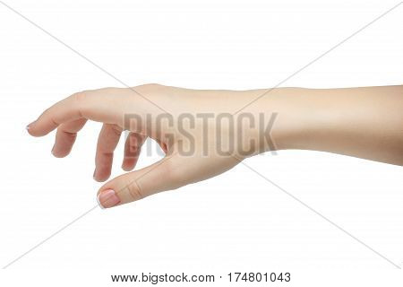 Human hand in picking or giving gesture isolate on white background with clipping path