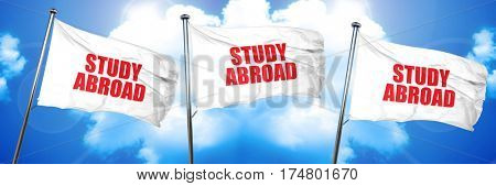 study abroad, 3D rendering, triple flags