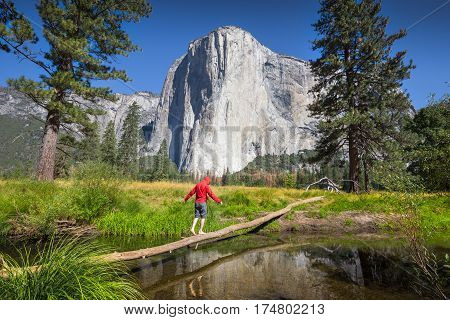 Young Hiker Balancing On A Tree In Front Of El Capitan, Yosemite National Park, California, Usa