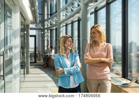 Two businesswomen discussing about a project in the company office while walking next to the big window.