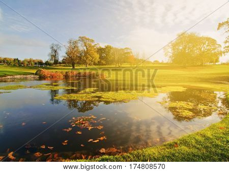 golf course lake set in an irish forest landscape