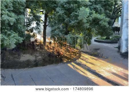 Sunlight casting shadows of a tree across a courtyard