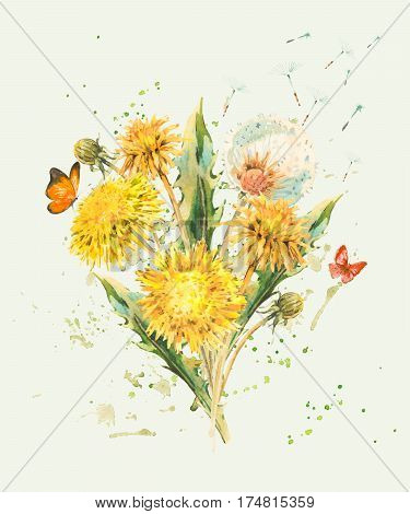 Watercolor spring flowers yellow and white dandelions, butterfly. Natural hand painted floral watercolor illustration on beige background