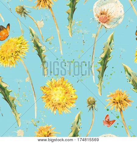 Watercolor seamless pattern with spring flowers yellow and white dandelions, butterfly. Natural hand painted floral watercolor illustration on blue background