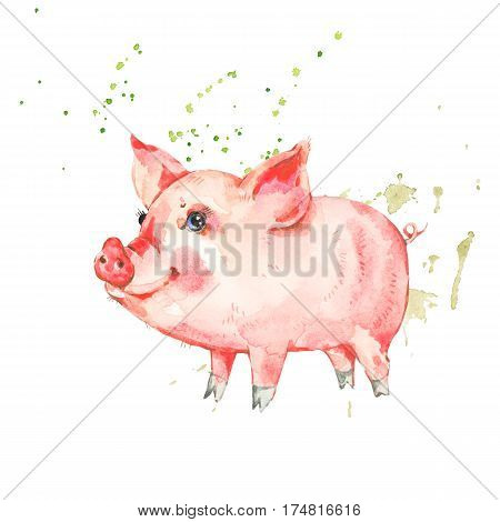 Cute piggy. Animal pig watercolor illustration. Hand painted art work isolated on white background