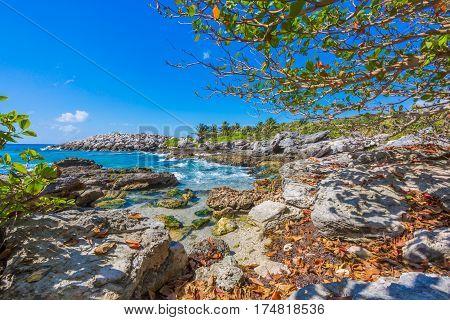 Tropical beach in caribbean sea, Cancun, Mexico