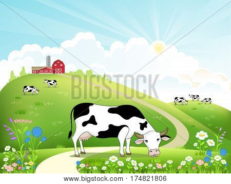 Dairy farm and a herd of cows on a beautiful summer landscape. Cow eating grass. Vector illustration.