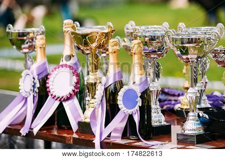 Different Champion Silver Trophy, Trophies. Winners Cup