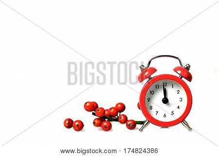Midnight clock and red berries isolated on white background
