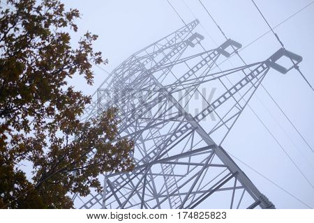 A tall powerline tower disappearing into the fog and a tree on the foreground.