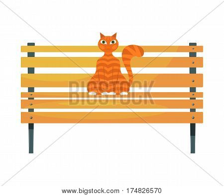 Red cat on the bench. Stock image of ginger tabby cat on a wooden park bench on a white background. Stock vector illustration