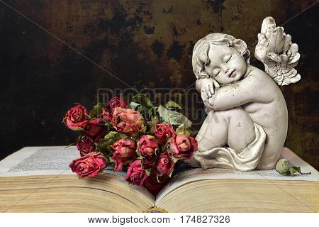 Angel roses and old book on grunge background