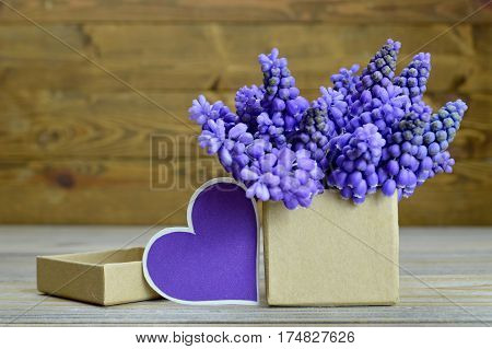 Muscari flowers arranged in gift box and blank heart-shaped tag