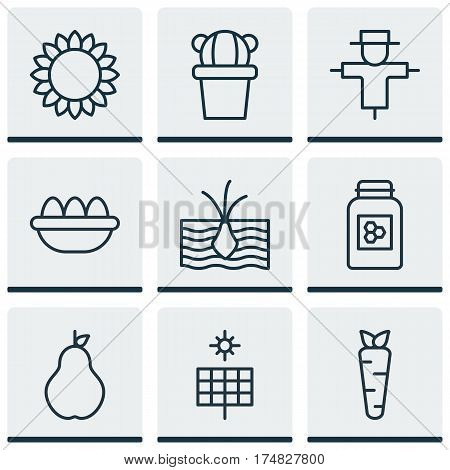 Set Of 9 Garden Icons. Includes Duchess, Jar, Helianthus And Other Symbols. Beautiful Design Elements.