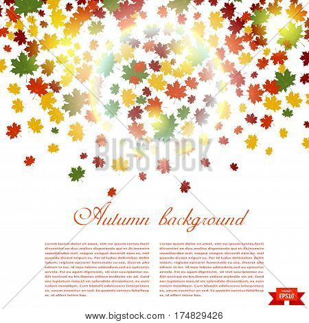 Autumn background and sunlight. Illustration of falling red yellow and green maple leaves. Image season. Maple leaves on a white background. Autumn weather. Stock vector illustration