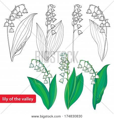 Vector Set Outline Vector Photo Free Trial Bigstock
