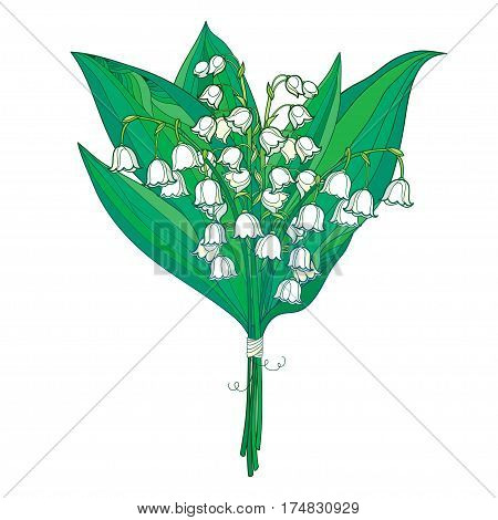 Vector bouquet with outline white Lily of the valley or Convallaria flowers and green leaves isolated on white. Ornate floral element for spring design. Bunch of may lily flower in contour style.