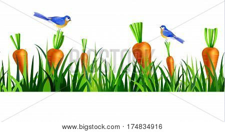 Green Grass seamless isolated clip art vector on white with carrots and bluebirds