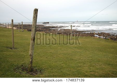 Old fishing net poles on the front of the coastline at Cairnbulg