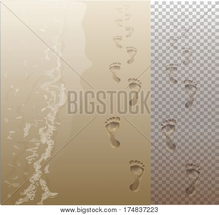 Receding into the distance footprints in the sand by the sea and on a transparent background. Vector Image.