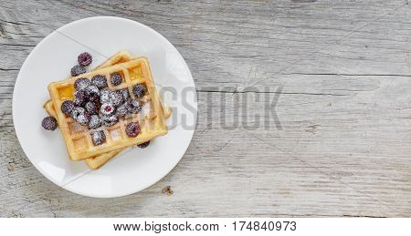 White porcelain plate with sweet waffles and fresh berries powdered with sugar on the background of old wooden board with space for text