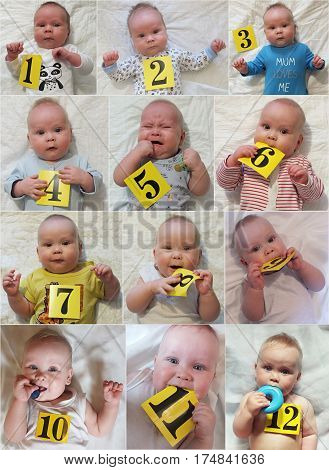 Baby growth process during the year, from month to year