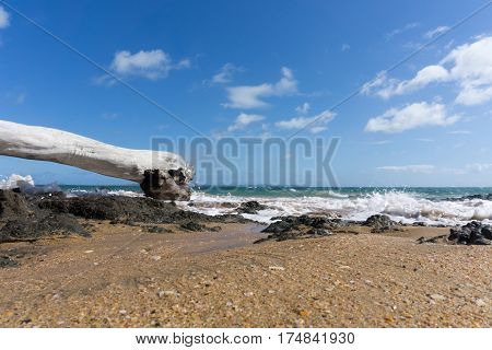 Driftwood washed up on red sand and blue sea of Cable Bay Northland New Zealand.
