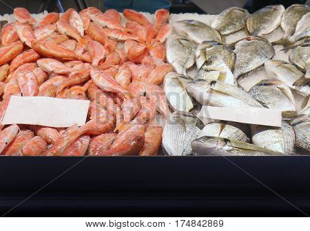 Pile of fresh sea fish and shrimps on ice sold on market stall