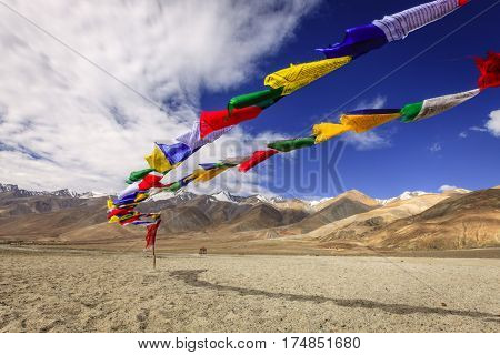 Buddhist prayer flags near Pangong Tso - alpine lake in the Himalayas on the China-India border