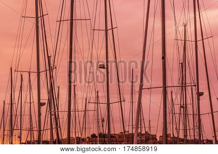 Pink Evening In Marina, Masts In The Sky