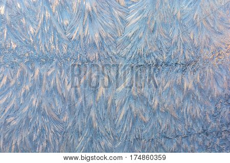 frost. wonderful winter patterns on glass at sunset.
