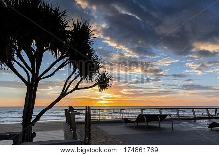 Surfers Paradise Gold Coast, colourful beach sunrise with pandanus tree and lay down chair